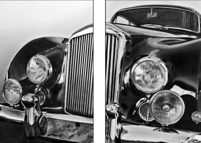 Beast diptych composite